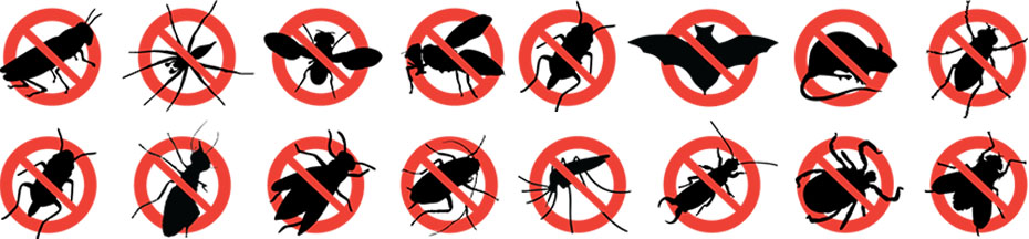 Monmouth county pest list